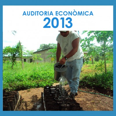 Auditoria 2013_portada